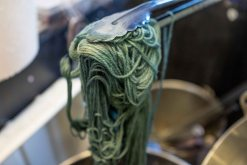 Indigo-dyed yarn a few seconds out of the vat.